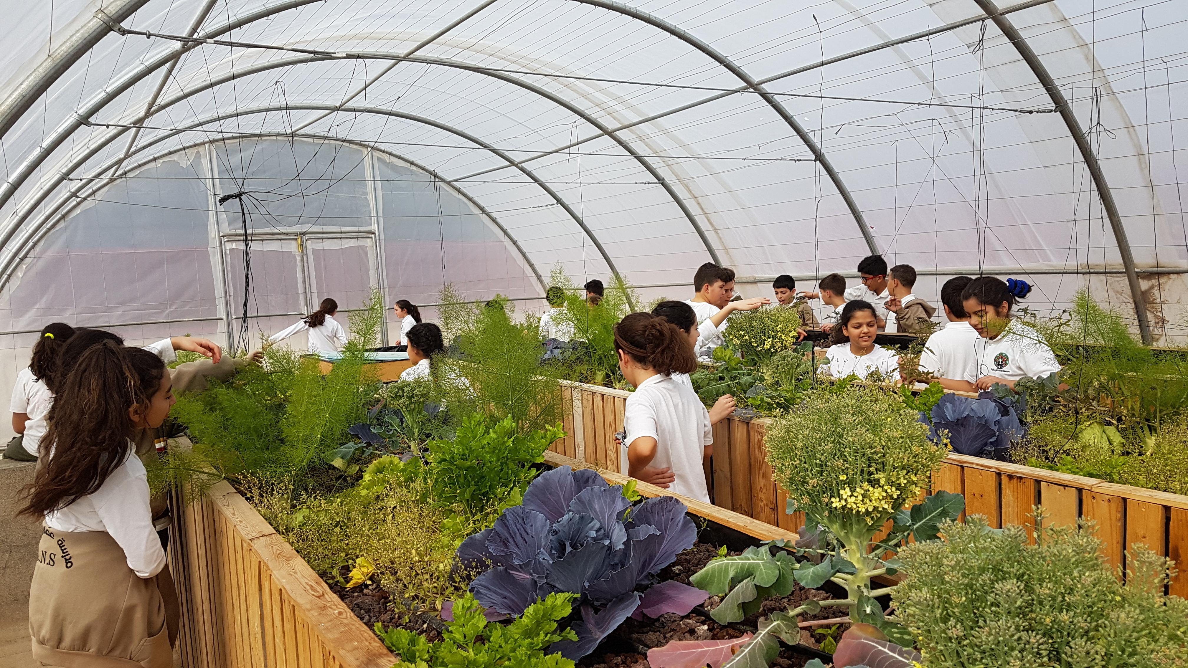 Food & Agritech Maker Residency