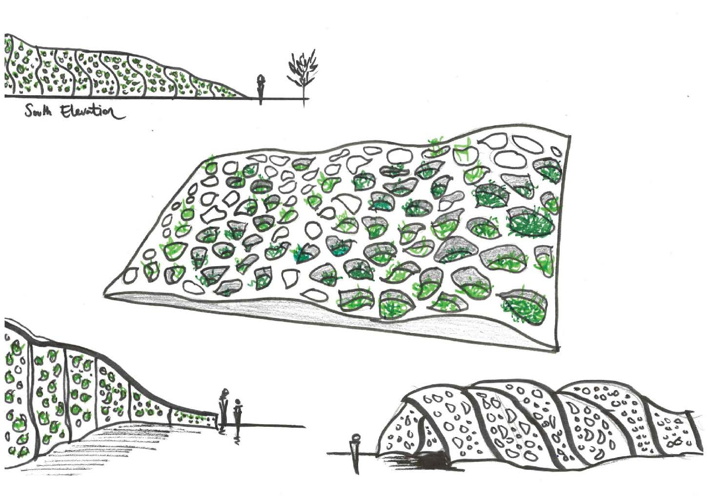Collective Studio, Plant Modern and Farah